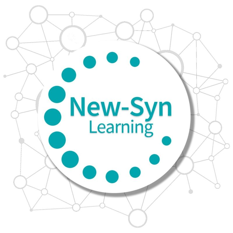New-Syn-Learning
