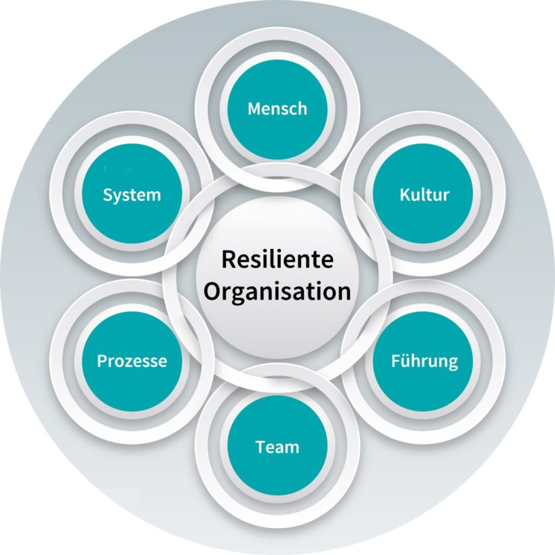 PontiVentus-Organisationsentwicklung-Transformationsbegleitung